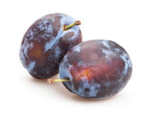 Plum Stock Photography