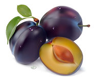 Plum and a half. Plum and leaves on a white background  illustration Stock Photography