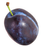 Plum and half of fruit on a white. File contains clipping paths. Royalty Free Stock Photo