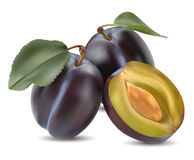 Plum and a half. And leaves on a white background Stock Photos