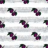 Plum hand drawn pattern. Gray strrips Stock Photography