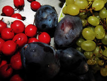 Plum, hawthorn and grapes. Plum, hawthorn and grape. On the plates on the table Stock Images