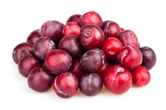 Plum heap Royalty Free Stock Image