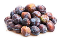 Plum Royalty Free Stock Image