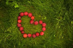 Plum in heart form. Lying on the grass in green summer garden. Free space for tex. Love symbol Stock Photo