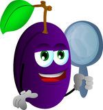Plum holding a mirror Royalty Free Stock Photography