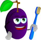 Plum holding tooth brush Stock Photo
