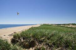 Plum Island Dunes and Beach Stock Image