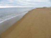 Plum Island shoreline i Massachusetts under vår Fotografering för Bildbyråer