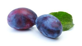 Plum isolated on a white background Stock Images
