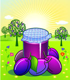 Plum jam. Resh fruit garden Stock Image