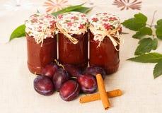 Plum Jams with Cinnamon Stock Photography