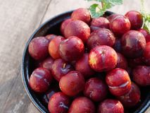 Plum Ju-li. the fruit is similar to the Red Ban Luang species. But the result will be smaller. Plum Ju-li The species comes from Taiwan. The appearance of the stock photo