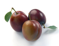 Plum and leaves. On a white background Royalty Free Stock Photo