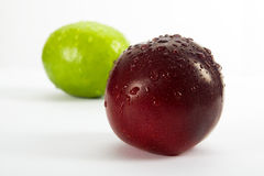 Plum and lemon Stock Image