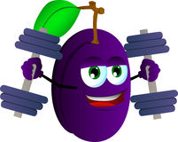 Plum lifting weight Royalty Free Stock Photography