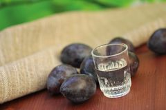 Plum liqueur and plums Stock Photos
