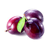 The plum is low polygonal. Vector. Plum style is low polygon. Fruit. Healthy eating Stock Photos