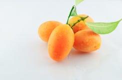 Plum Mango Royaltyfri Bild