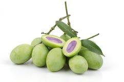 Plum Mango (Bouea macrophylla Griffith). Stock Image