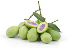 Plum Mango (Bouea macrophylla Griffith). Stock Photography
