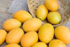 Plum mango, or Marian plum fruit Royalty Free Stock Image