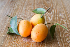 Plum mango, or Marian plum Stock Image