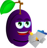 Plum market researcher Royalty Free Stock Photos