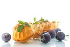 Plum muffins Stock Images