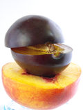 Plum+peach+plum Stock Photos