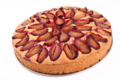 Plum pie Royalty Free Stock Image