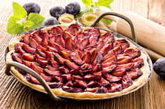 Plum Pie in Baking Form. Plum pie as closeup in baking form Royalty Free Stock Image