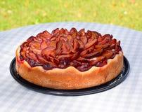 Plum pie Royalty Free Stock Image