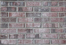 Plum Purple-Farbebacksteinmauer stockfotografie