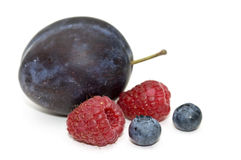 Plum, raspberry and bilberry. Royalty Free Stock Photo