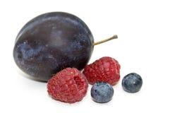 Plum, raspberry and bilberry. Royalty Free Stock Photo
