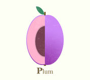 Plum raster illustration Stock Photography