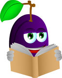 Plum reading Stock Images