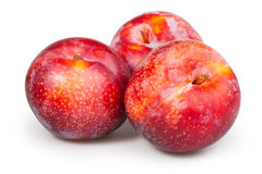 Plum red group Stock Photo