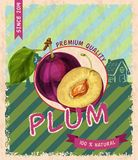 Plum retro poster Royalty Free Stock Images
