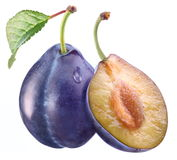 Plum with a slice and leaf Stock Photography