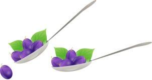 Plum spoon Royalty Free Stock Photo
