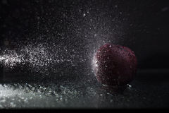 Plum in spray Royalty Free Stock Images