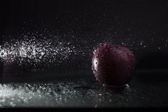 Plum in spray Royalty Free Stock Photo