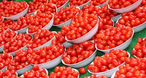Plum Tomatoes. Royalty Free Stock Photo