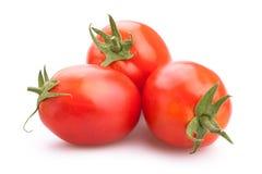 Plum Tomatoes Stock Image