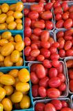 Plum tomatoes Royalty Free Stock Photo