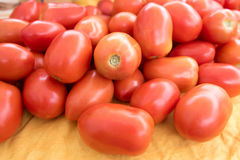 Plum Tomatoes Stock Photography
