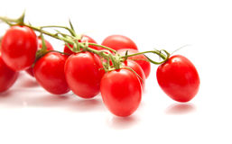 Plum tomatoes on the vine Royalty Free Stock Photos