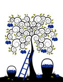 Plum tree and baskets of plums. Illustrated plum tree, ladder and baskets of plums on white background Royalty Free Stock Photo